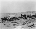 wagon_train_photo_large