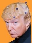 trump-hair-style-sized