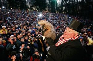 punxsutawney-phil-photo